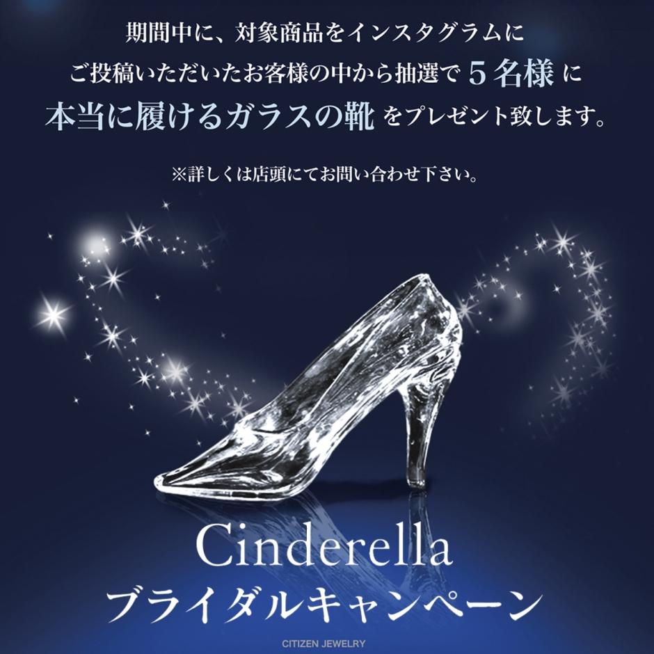 シンデレラ本物のガラスの靴キャンペーン