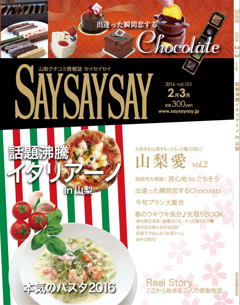 saysaysay-v101