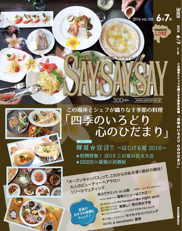 saysaysay-v103