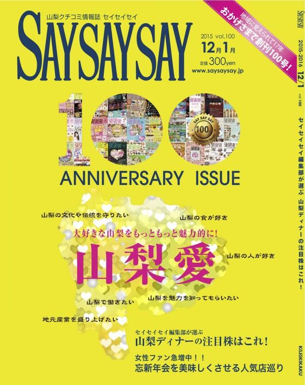 saysaysay-v100